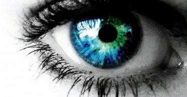Realistic-Vector-Eye