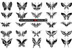 Abstract-Butterflies-Vector