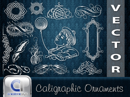 Calligraphic Ornaments in vector