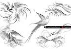 creative-birds-calligraphy
