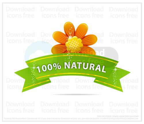 flower-yellow-nature