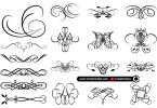 Calligraphic-Floral-Designs