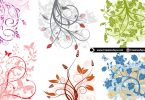beautiful-flowers-for-your-designs