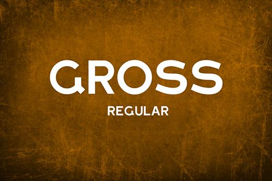 Gross-01