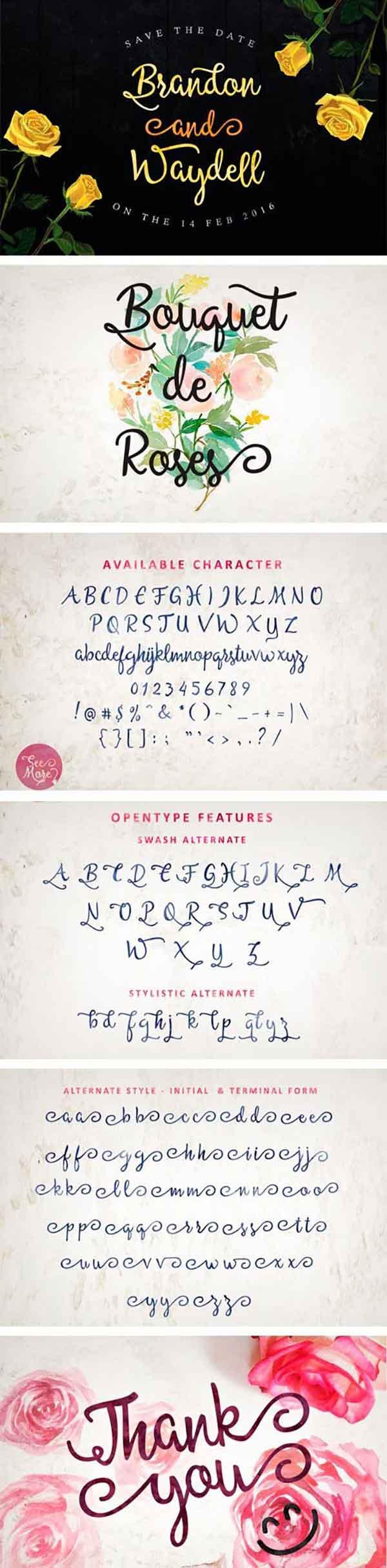 allessa-script-font-details